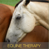 Equine Therapy Boulder